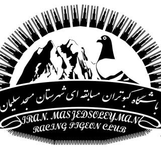 باشگاه کبوتران مسابقهای مسجدسلیمان