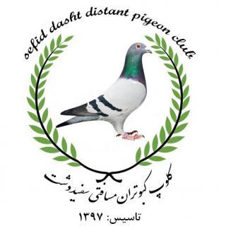 کلوپ کبوتران مسافتی سفید دشت