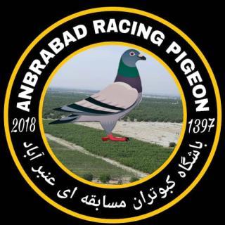 کلوپ کبوتران مسافتی عنبرآباد