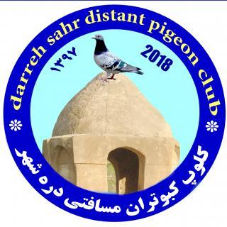 کلوپ کبوتران مسافتی درهشهر