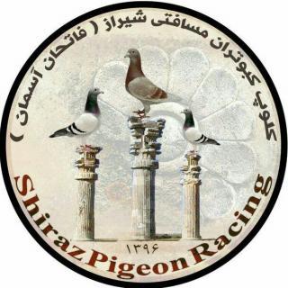 کلوپ کبوتران مسافتی فاتحان آسمان شیراز
