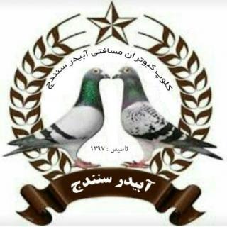 کلوپ کبوتران مسافتی سنندج