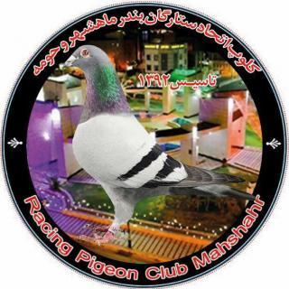 کلوپ کبوتران مسافتی اتحاد ستارگان ماهشهر و حومه