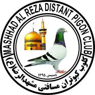 کلوپ کبوتران مسافتی مشهدالرضا(ع)