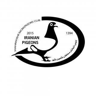 کلوپ کبوتران مسافتی شاهینشهر