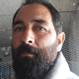 آقای محمود صفدری